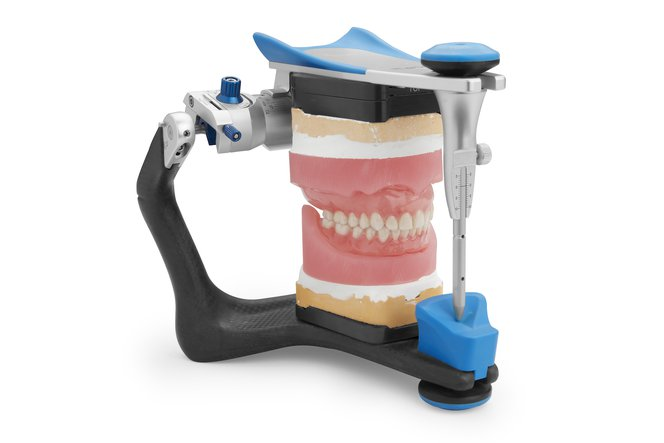 digital dentures articulated